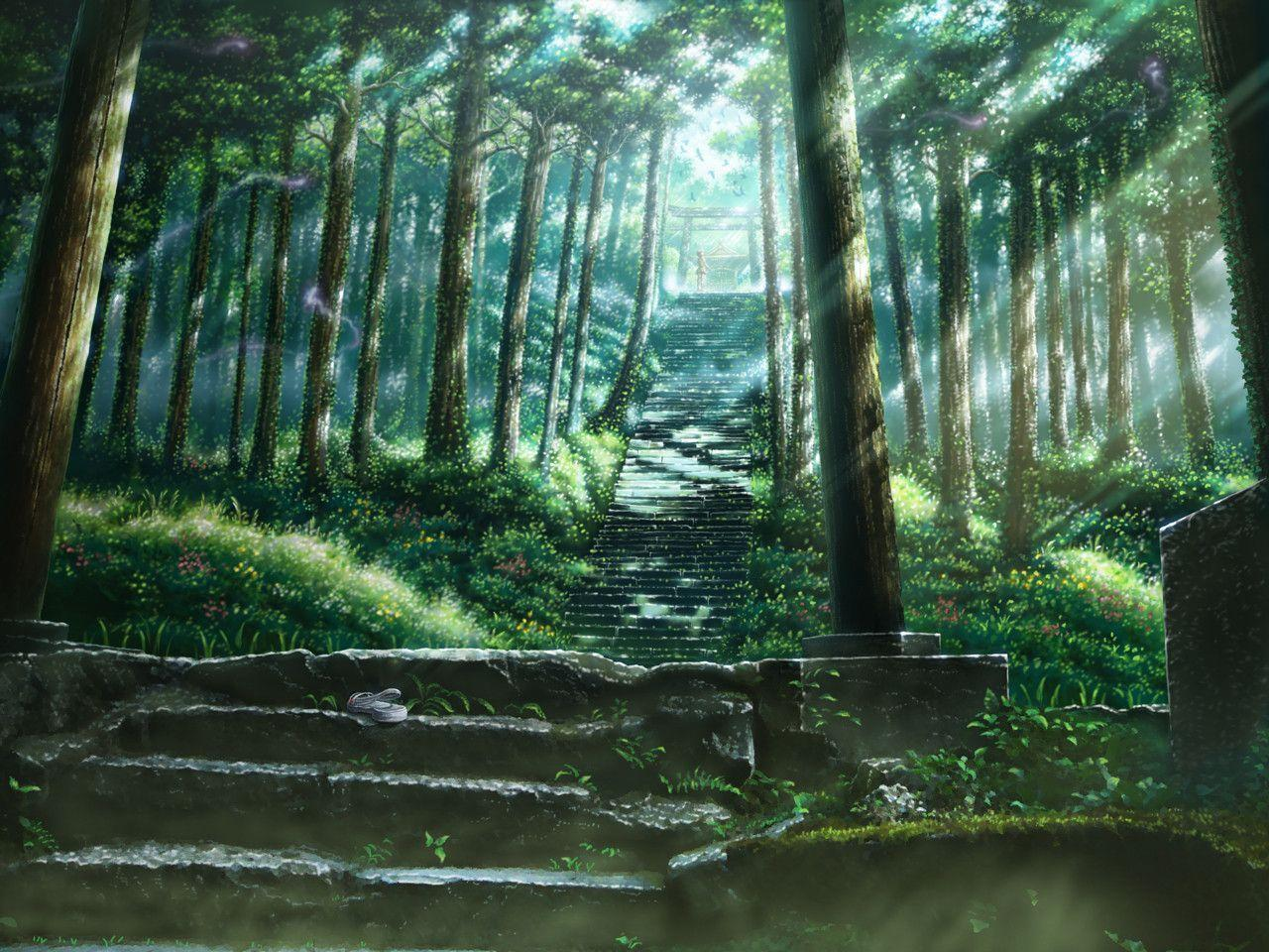 Anime Forest Backgrounds 1280x960