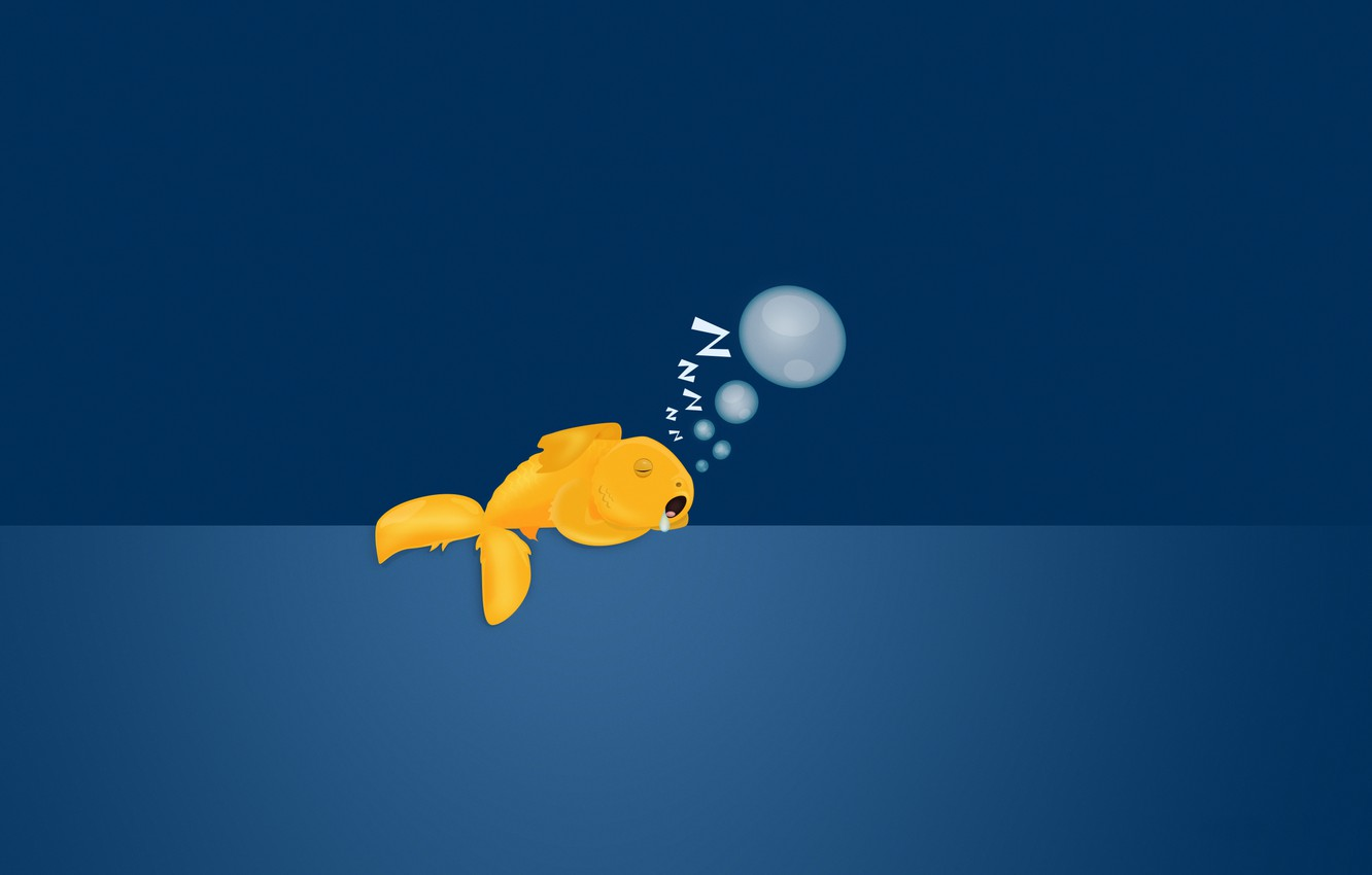 Wallpaper bubbles background sleeping goldfish images for 1332x850