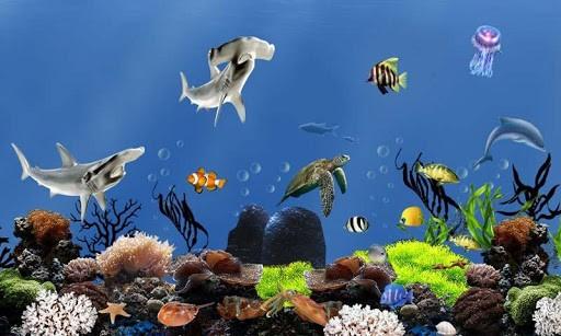 Fish aquarium live wallpaper wallpapersafari for Fish tank 3d live wallpapers
