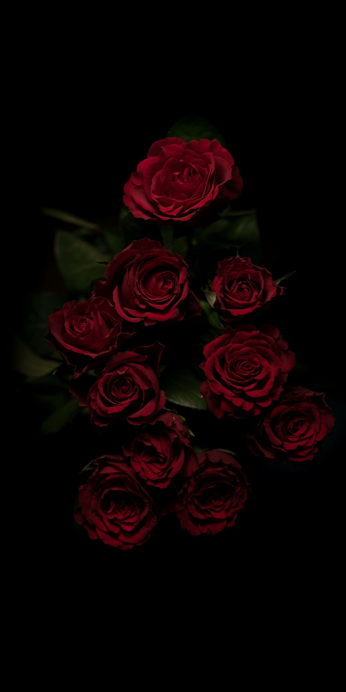 49 Red Roses Aesthetic Wallpapers On Wallpapersafari