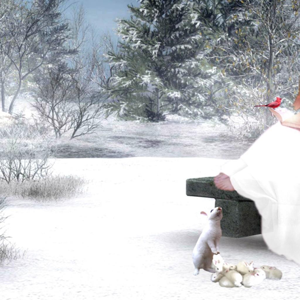 Christmas Angels HD Wallpapers for iPhone 5 Wallpaper HD Desktop 1024x1024
