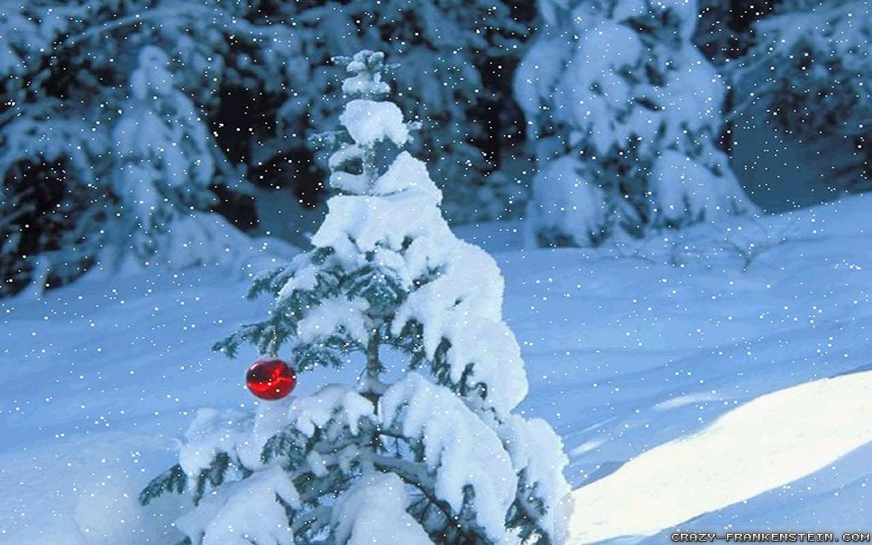 Christmas Nature Scenes Wallpapers WallpapersCharlie 1440x900