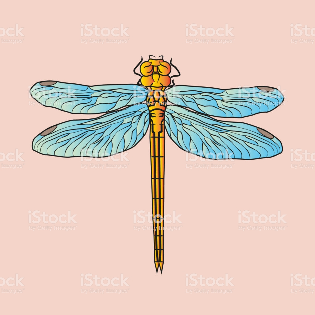 Dragonfly On Pink Background Beautiful Postcard Illustration Or 1024x1024