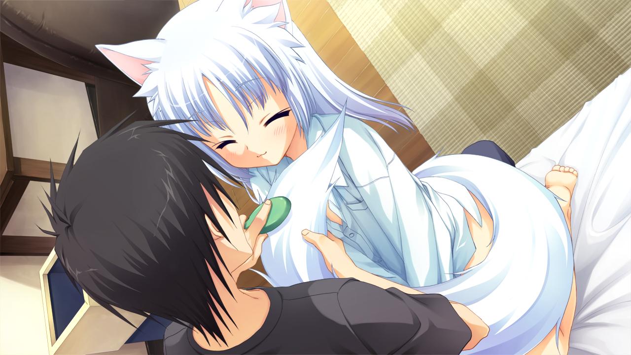 Konachancom   56290 animal ears catgirl muririn rindou ruri tail 1280x720