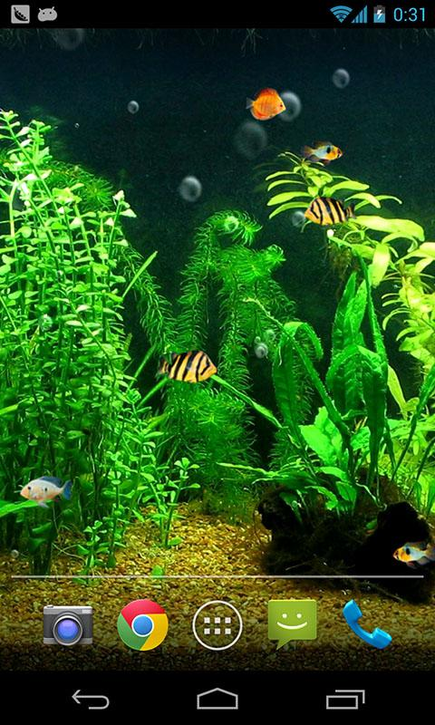 Fish Tank HD Live Wallpaper   Android Apps on Google Play 480x800