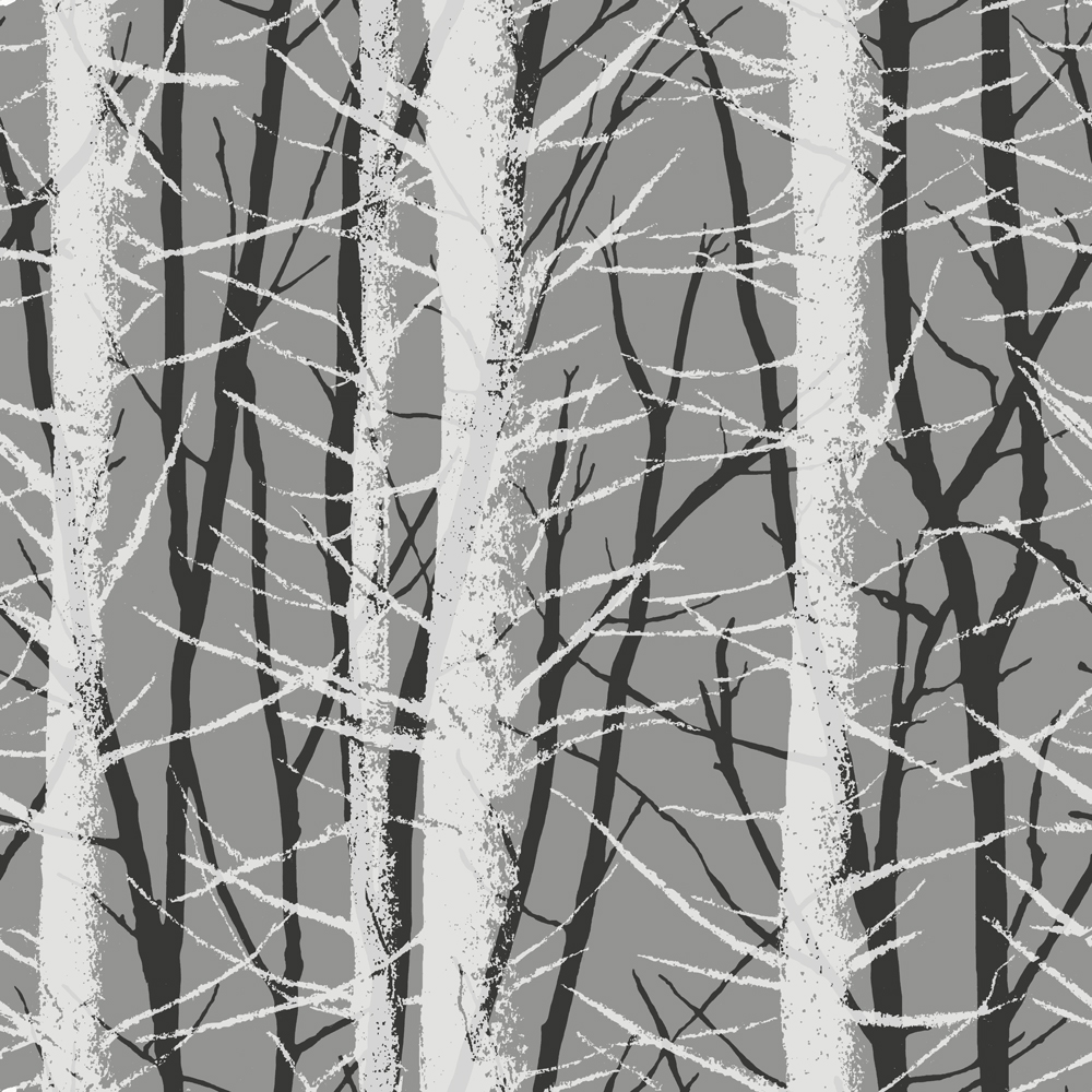 Birch Tree Wall Covering 1000x1000