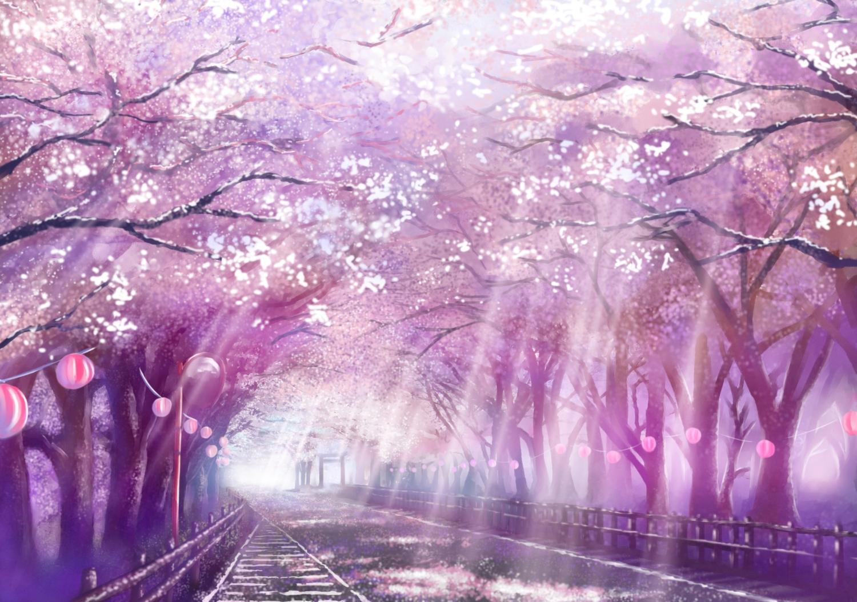 Free Download Cherry Blossoms Monorisu Original Petals Scenic Tree