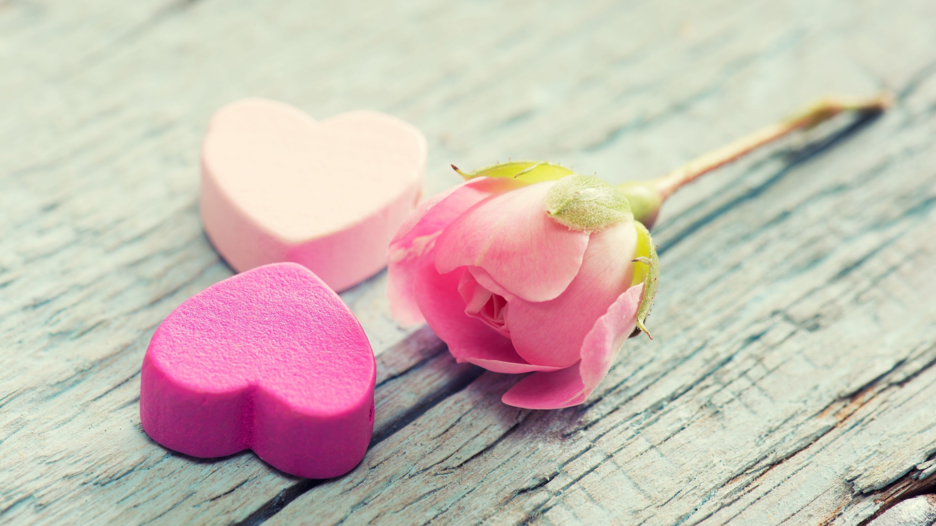 Wallpaper Valentines Day February 14 hearts flowers love 3840x2160