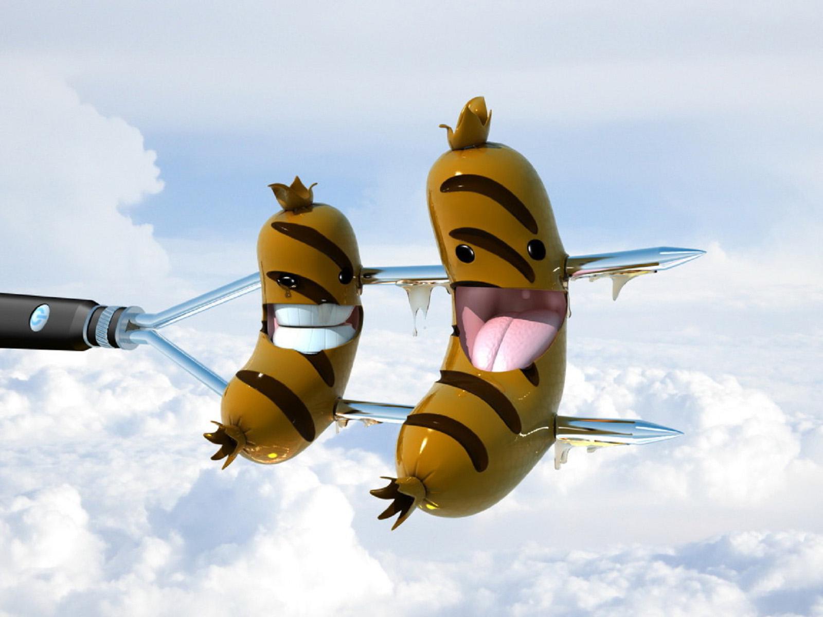 Best top desktop funny wallpapers hd funny wallpaper picture image 2 1600x1200