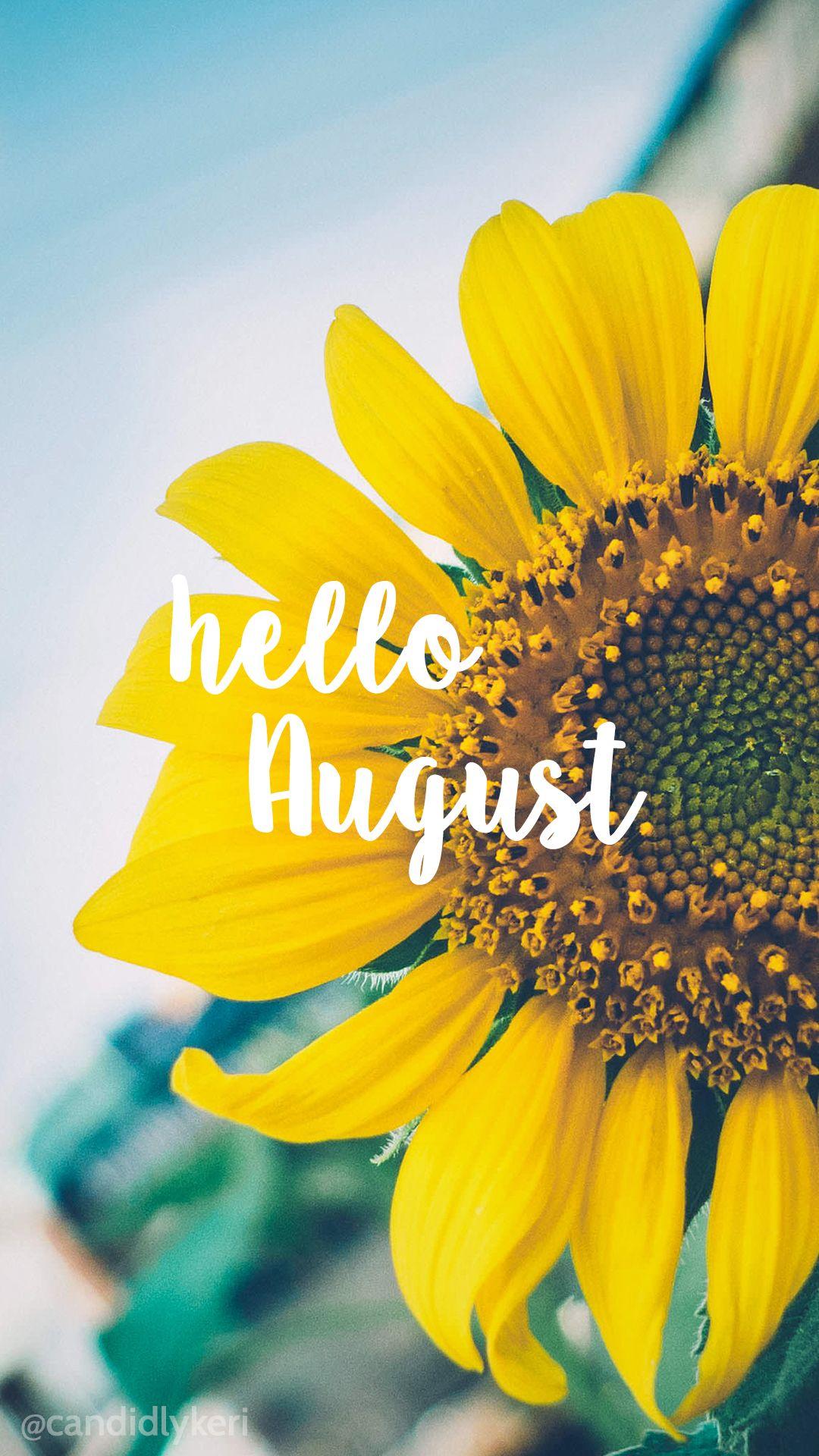 Hello August Sunflower bright happy background August 2016 1080x1920