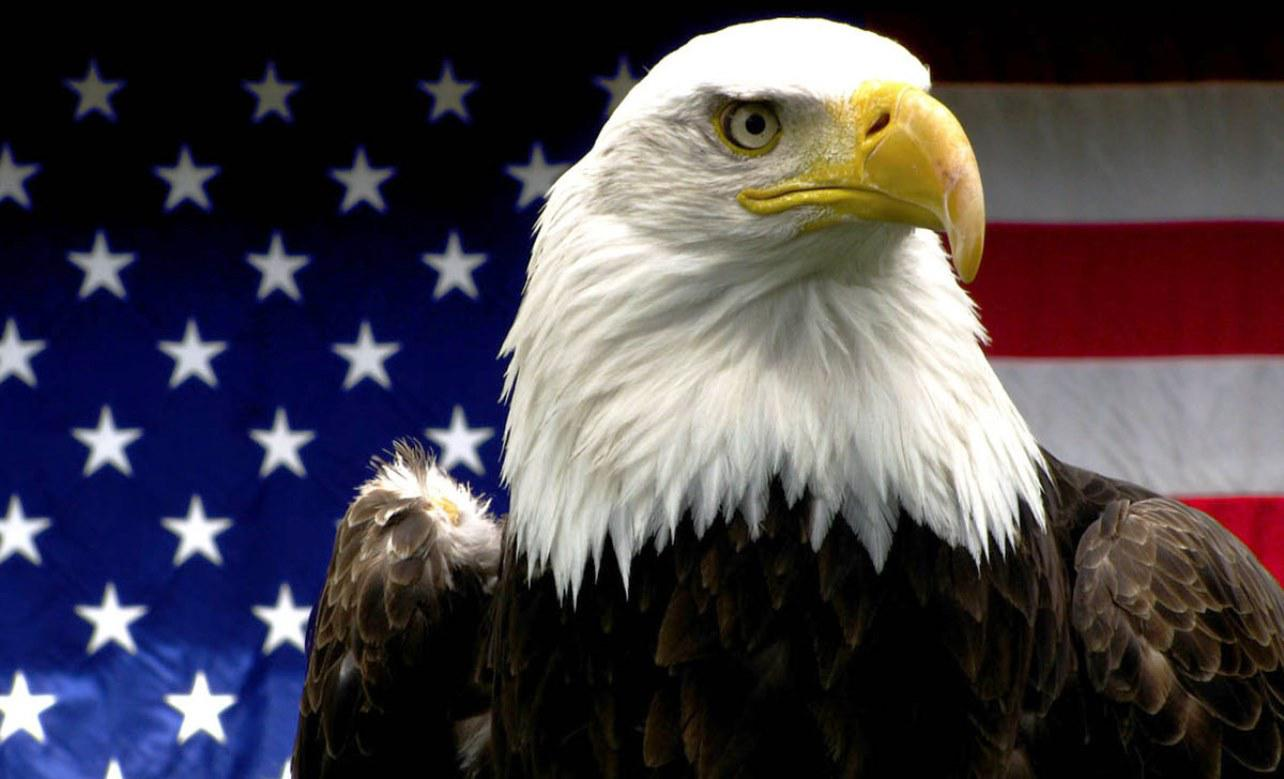 29 American Eagle Quality HD Images GsFDcY 1284x779