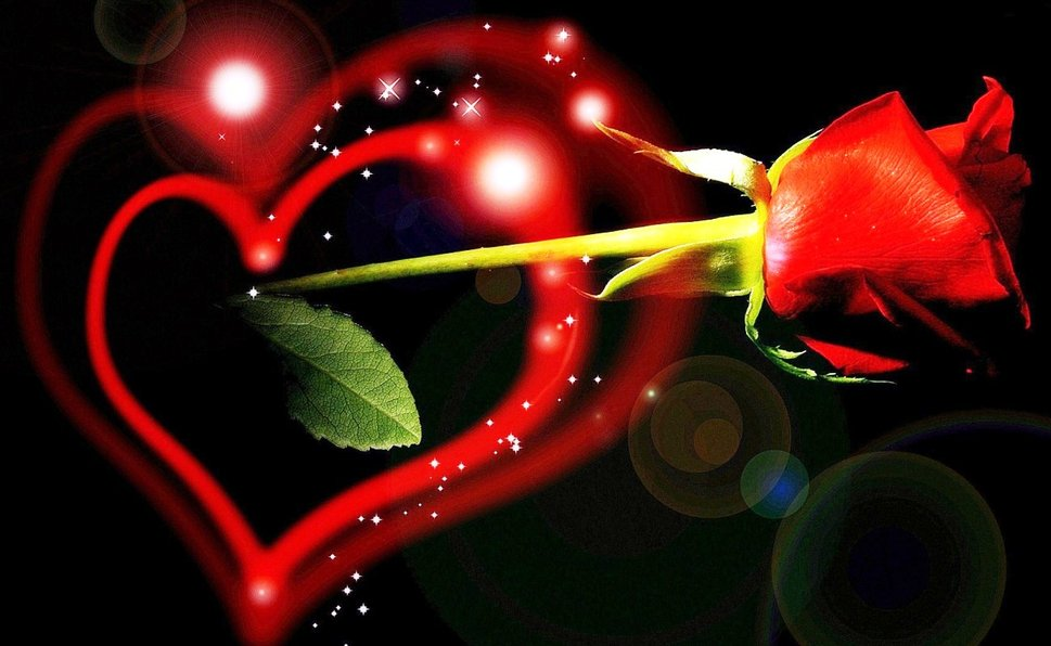 Free Download New Love Wallpaper Forwallpapercom 969x596 For