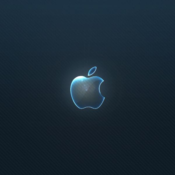 Wallpapers for iPad iPad 2 Apple Logo Wallpaper for iPad and iPad 600x600