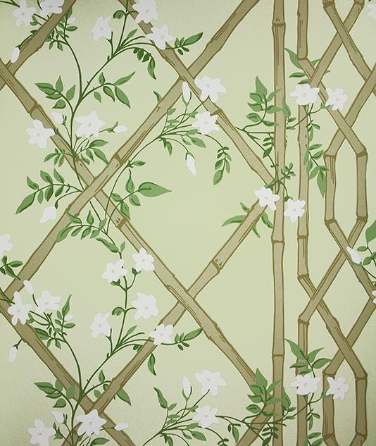 Jasmine Lattice Wallpaper A decorative wallpaper featuring a floral 534x633