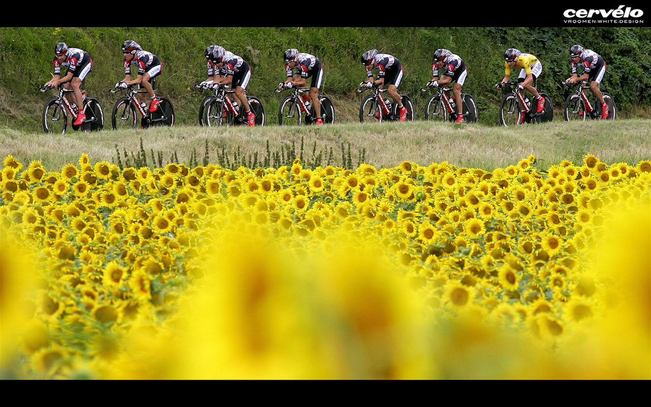 Tour de France   Cycling 6 Sports Wallpapers 1280x800