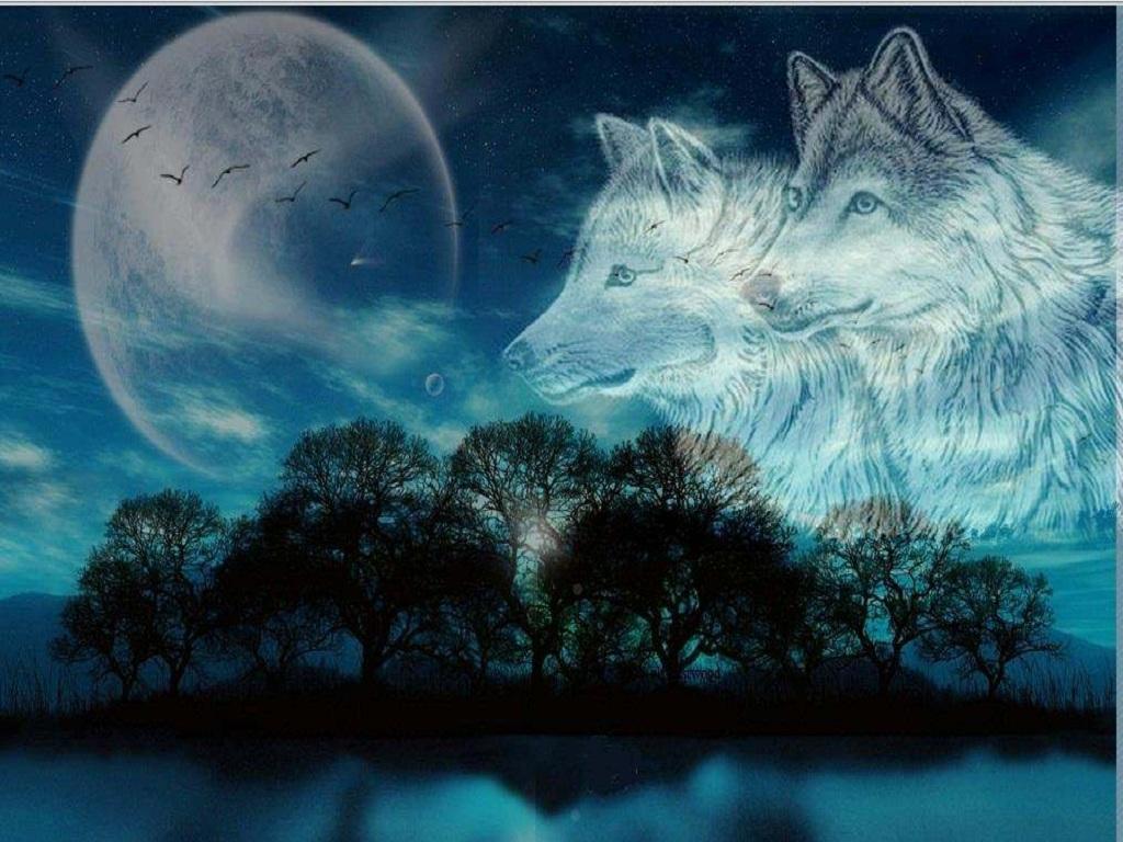 картинки волчица под луной его песен