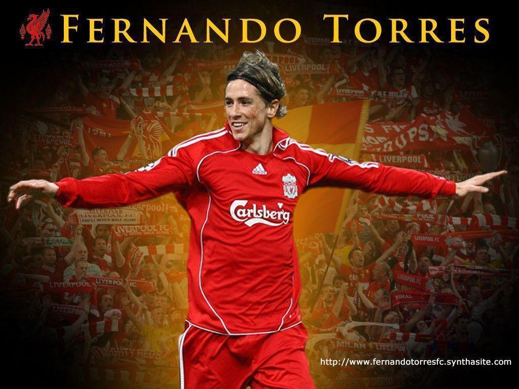 Torres Wallpapers 1024x768