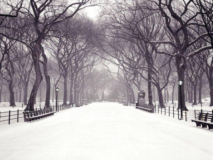 New York City Wallpaper Winter NYC Winter Scenes Wall...