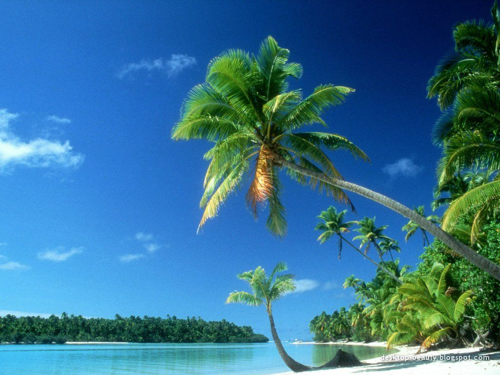 Hd Tropical Island Beach Paradise Wallpapers And Backgrounds: Tropical Beach Screensavers And Wallpaper
