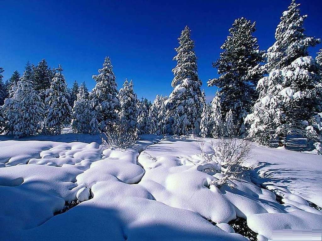 Winter Backgrounds Desktop Hd Wallpapers Pictures to 1024x768