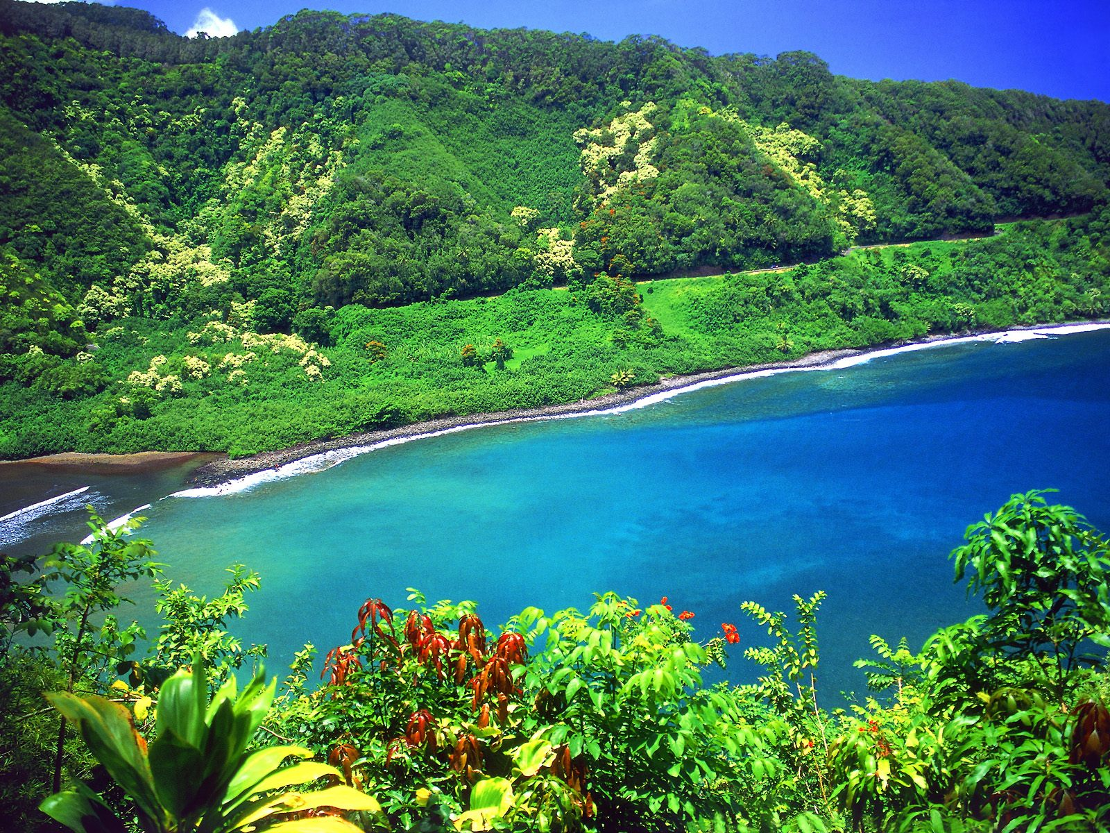 Hawaii Beach – Wallpaper – 1600 X 1200 #187755 HD Wallpaper Res ...