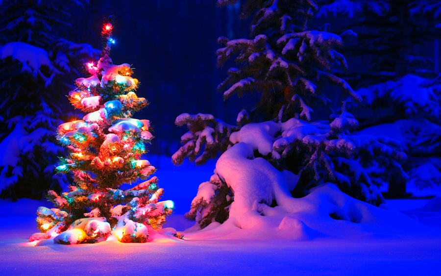 Winter Christmas Desktop Backgrounds   Picseriocom 900x563