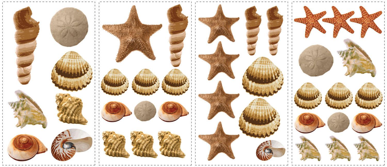 RMK1259SCS Sea Shells Wall Stickers 1500x649