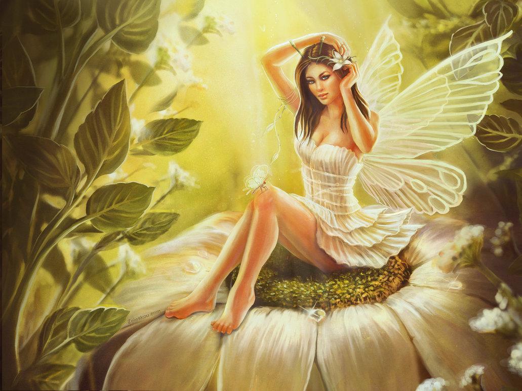 Wallpaper of fairies   SF Wallpaper 1031x774