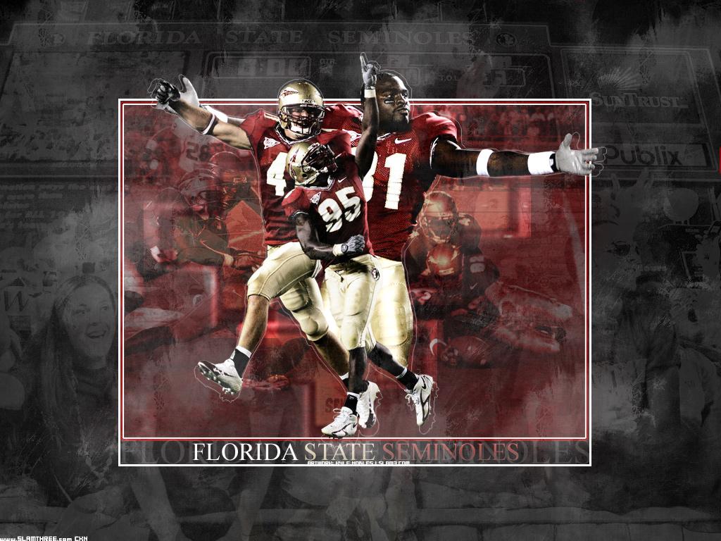 Florida State Seminoles Football Wallpaper for Samsung Galaxy S4 1024x768