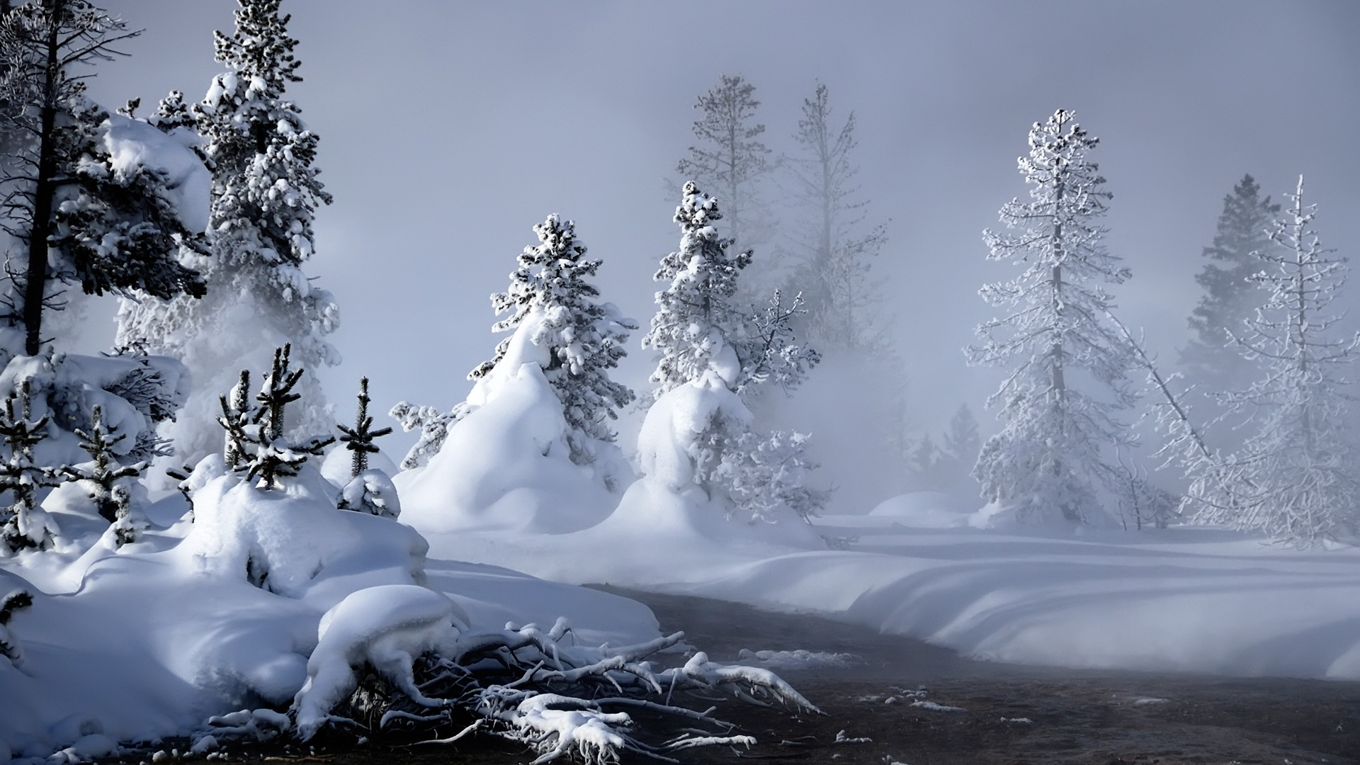 Winter Scenes Wallpaper The Galleries of HD Wallpaper 1920x1080