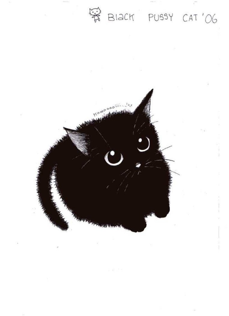 Free Download Animal Pictures Blog Cute Cat Pictures To Draw 762x1049 For Your Desktop Mobile Tablet Explore 48 Black Cat Wallpaper Drawings Cats Wallpaper Cat Wallpaper 1920x1080 Screensavers And Wallpaper Cats