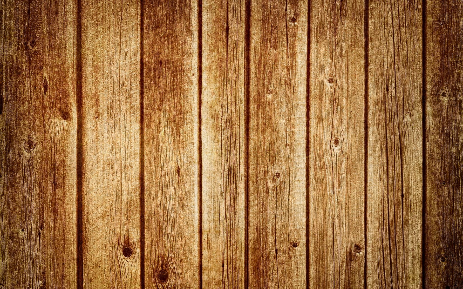 Board Wood Tree Macro HD Wallpaper 3D Abstract Wallpapers 1920x1200