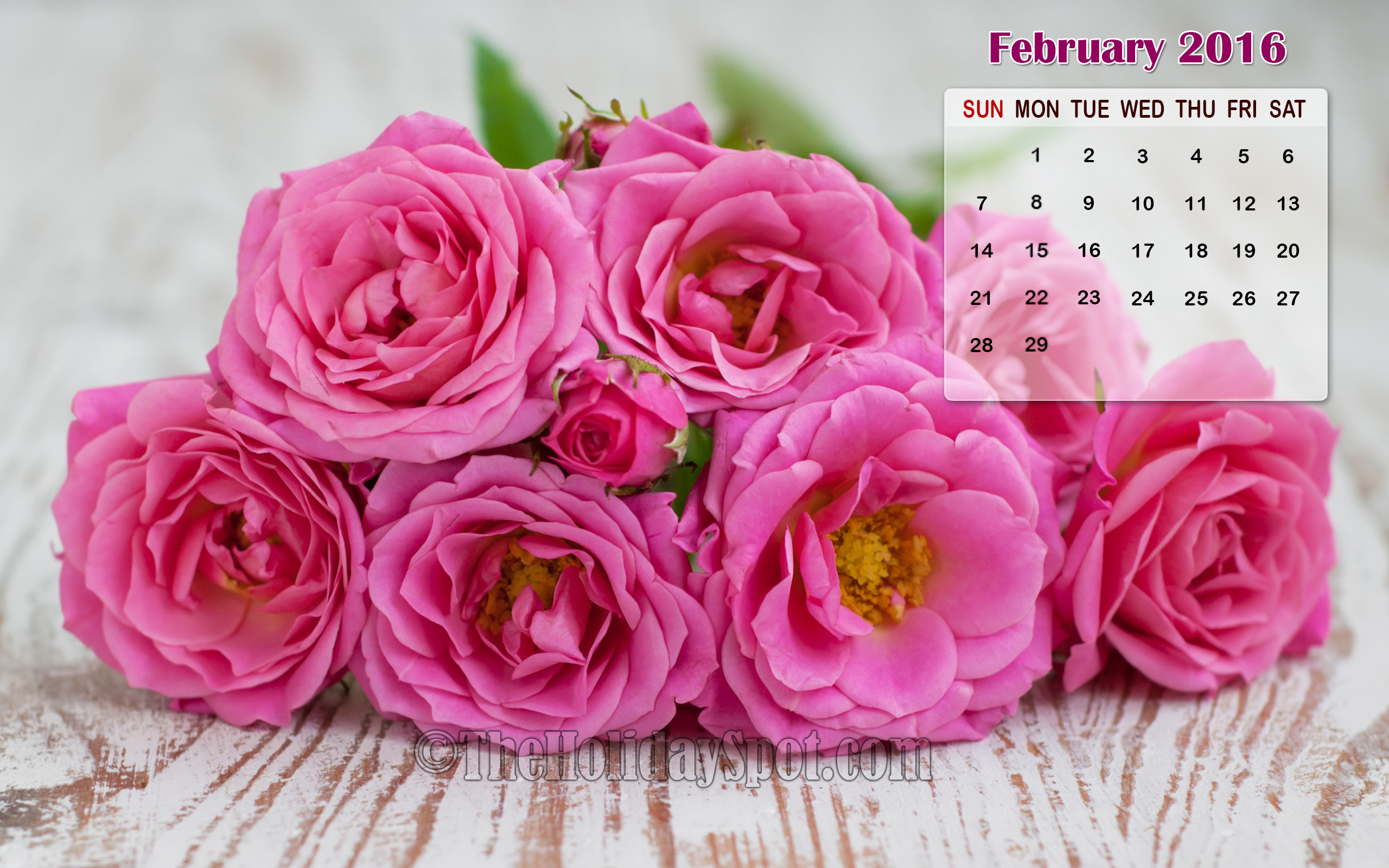 month february wallpaper Gallery 2560x1600