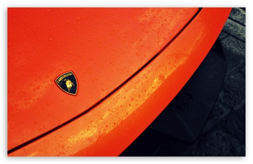 Lamborghini Logo HD wallpaper for Standard 43 Fullscreen UXGA XGA 510x330