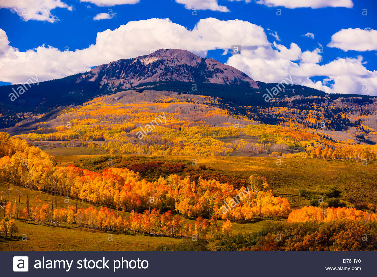 Fall color Lone Cone Peak in background near Telluride Colorado 1300x955