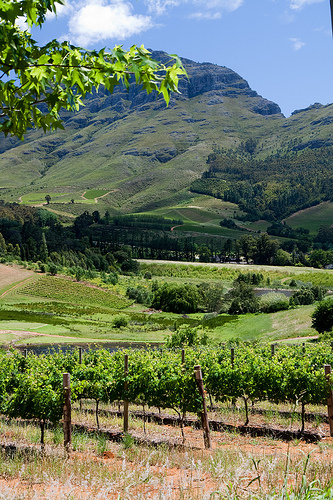 South Africa Landscape Creative Commons Wallpaper 1 Flickr   Photo 333x500
