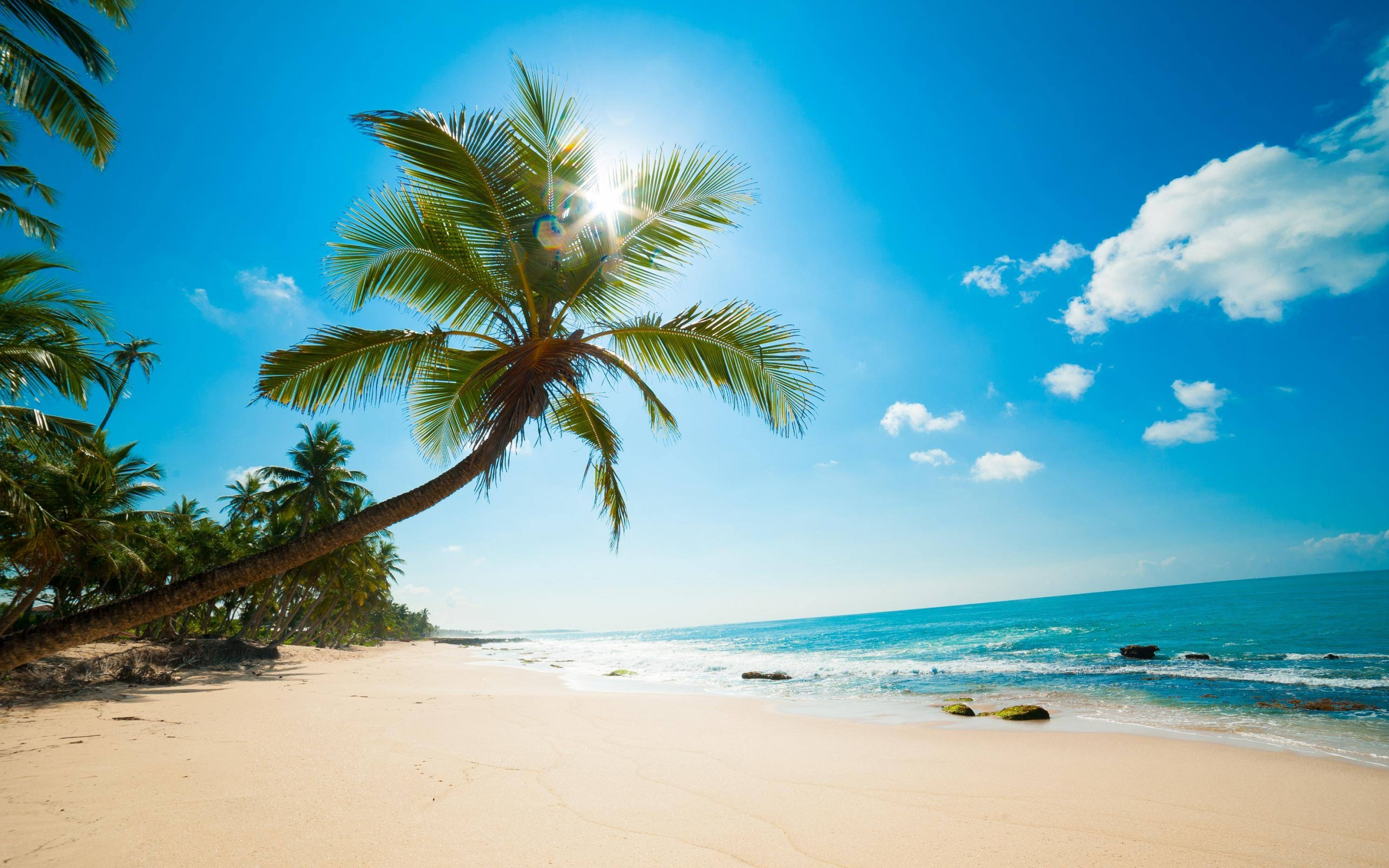 Download Beautiful Sunny Beach HD wallpaper for 2560 x 2560x1600