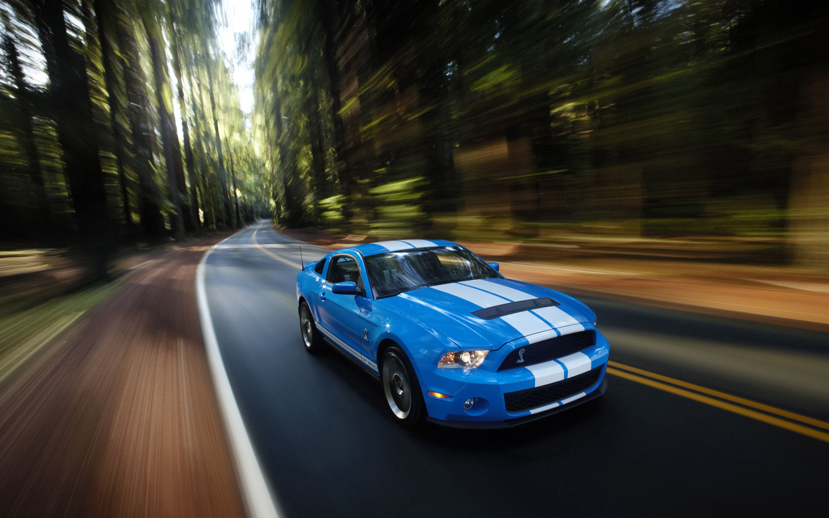 Ford Mustang Ford Mustang Desktop Wallpapers Widescreen Wallpaper 1680x1050