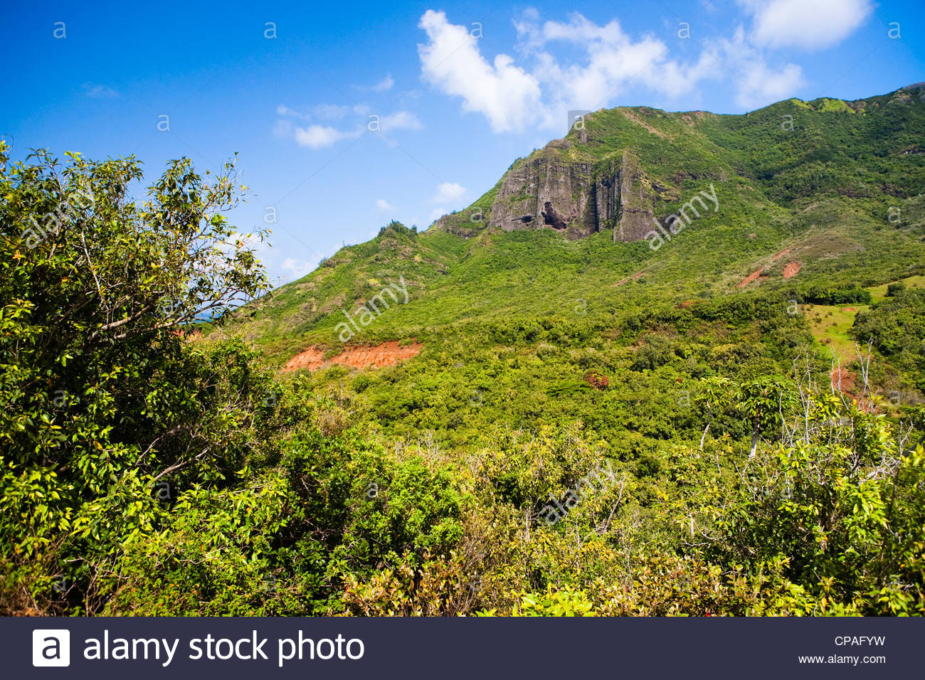 Kauai Hawaii USA The Haupu mountain range is in the background 1300x956