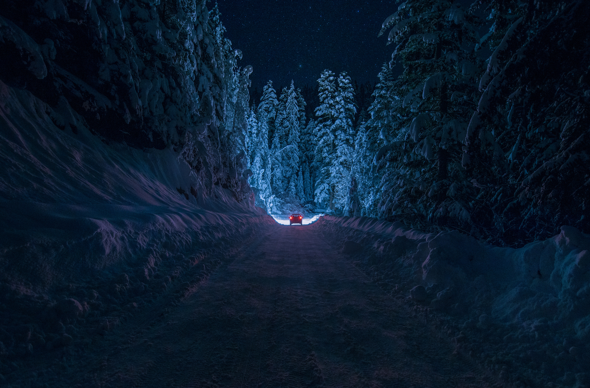 Snowy Night Forest Desktop Background Wallpaper 2048x1345