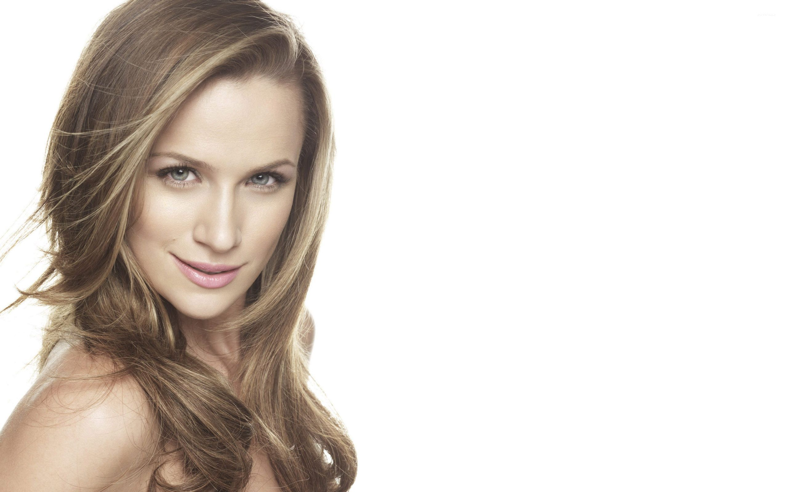 78 Shantel Vansanten Wallpaper On Wallpapersafari