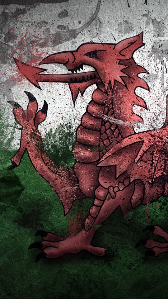 Download wallpaper 540x960 wales dragon symbol flag paints 540x960