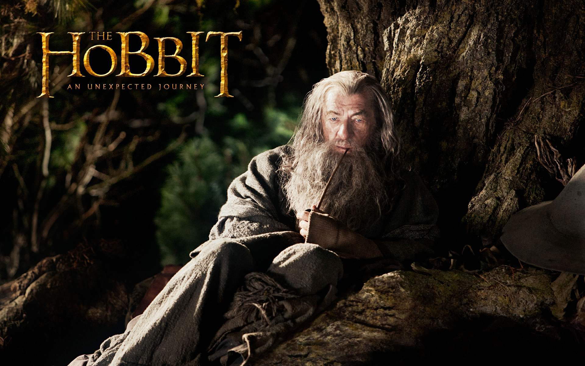 The Hobbit Wallpaper Desktop Wallpaper Size 1920x1200 AmazingPict 1920x1200