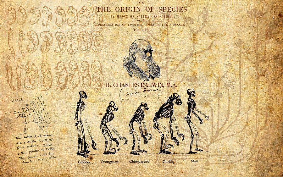 Charles Darwin collage Charles Darwin in 2019 Charles darwin 900x563
