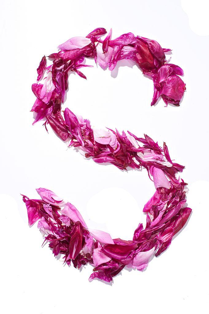 S Alphabet In Rose S Wallpaper Ima...