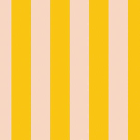 Stripe Sorbet Removable Wallpaper 540x540