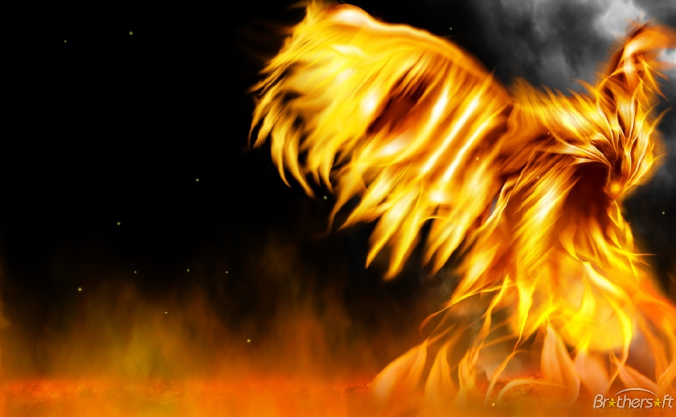 Fire Everywhere Animated Wallpaper Fire Everywhere Animated Wallpaper 1377x850