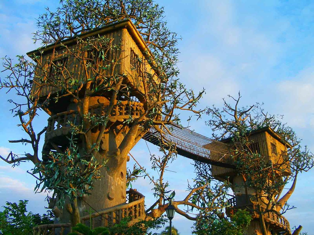 Cool Tree House   Desktop Wallpapers 1024x768