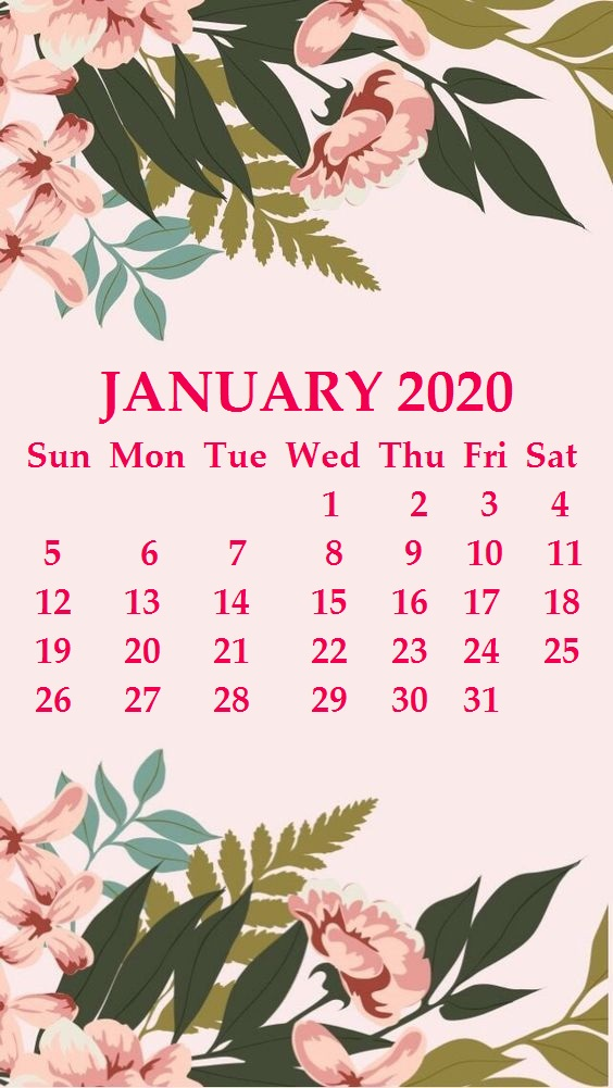 iPhone 2020 Calendar Wallpaper Calendar 2020 564x1001