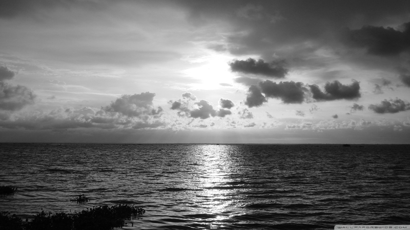 black and white nature beach seas 1920x1080 wallpaper Nature Beaches 800x450